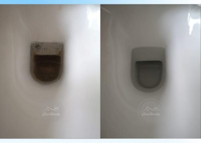 Toilet Bowl Cleaning Results