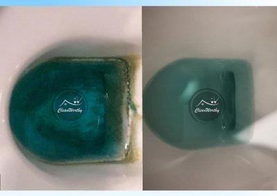 Toilet Bowl Stubborn Stain Removal